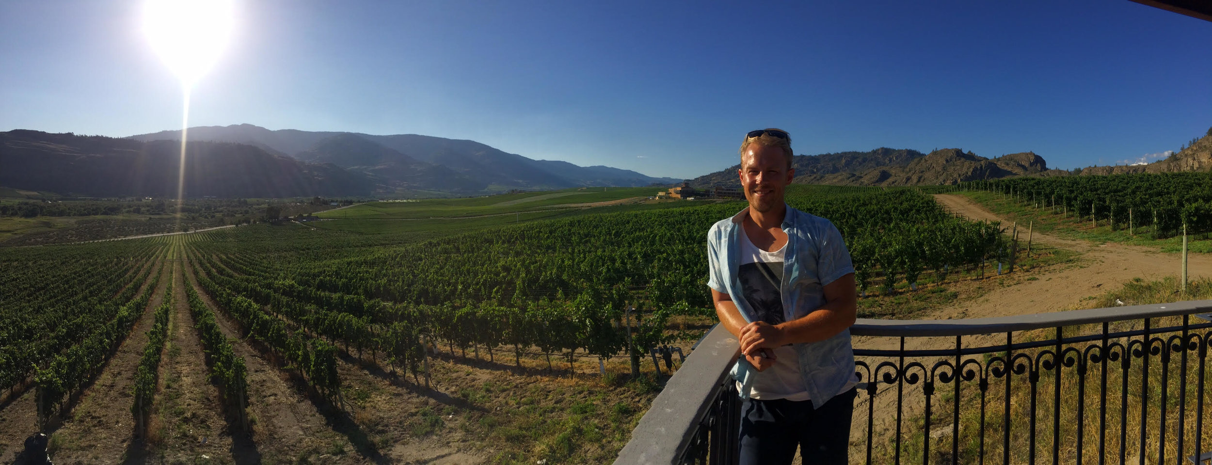 Adam vineyards.jpg