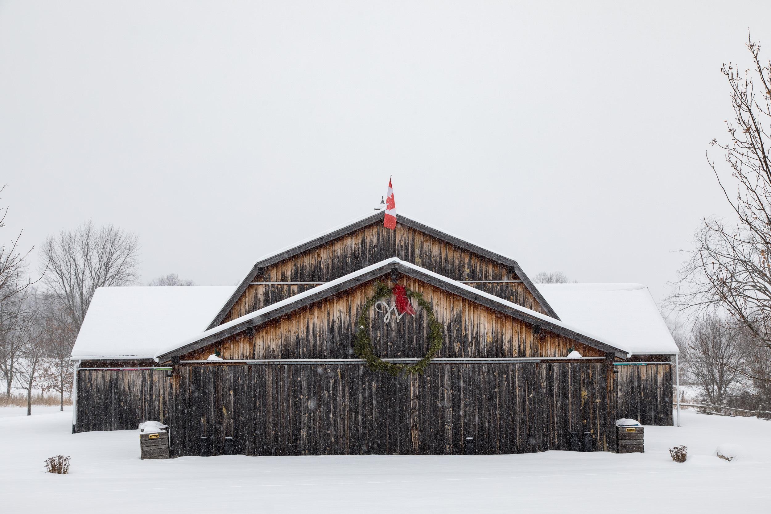 winterbarn-1 2018 Daag.jpg