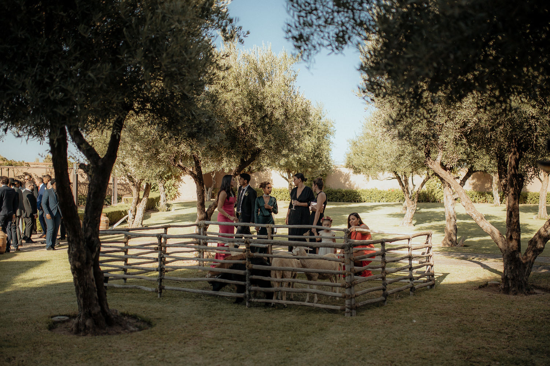 Marrakesh-wedding-photographer-palais-paysan-2048.jpg