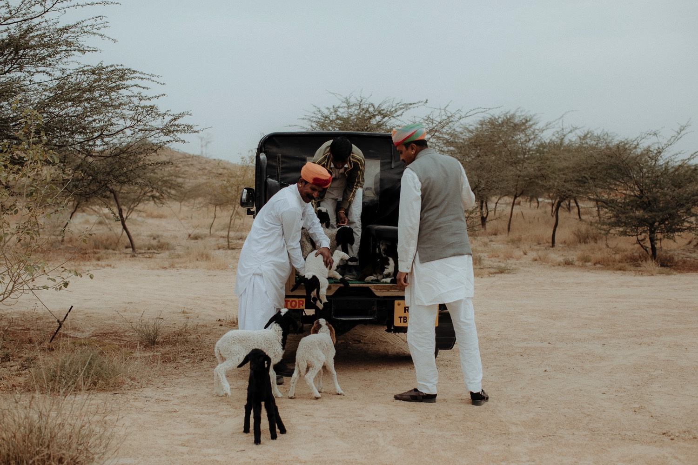 139-suryagarh-wedding-jaisalmer-20255.jpg