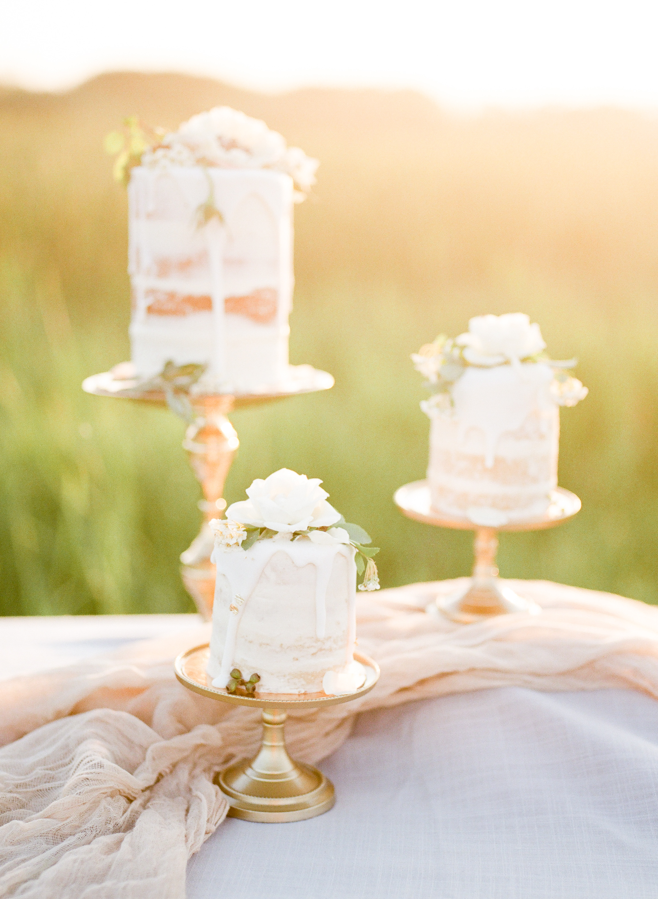 tuscan prairies styled shoot | jennifer bianca calligraphy | shot by esther funk photography | click through to full post and to see the full list of vendors