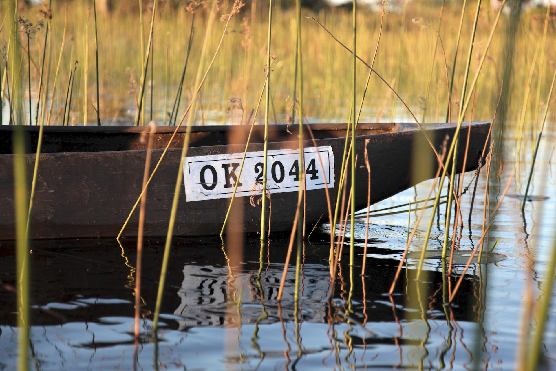 009_Okavango_Delta.jpg