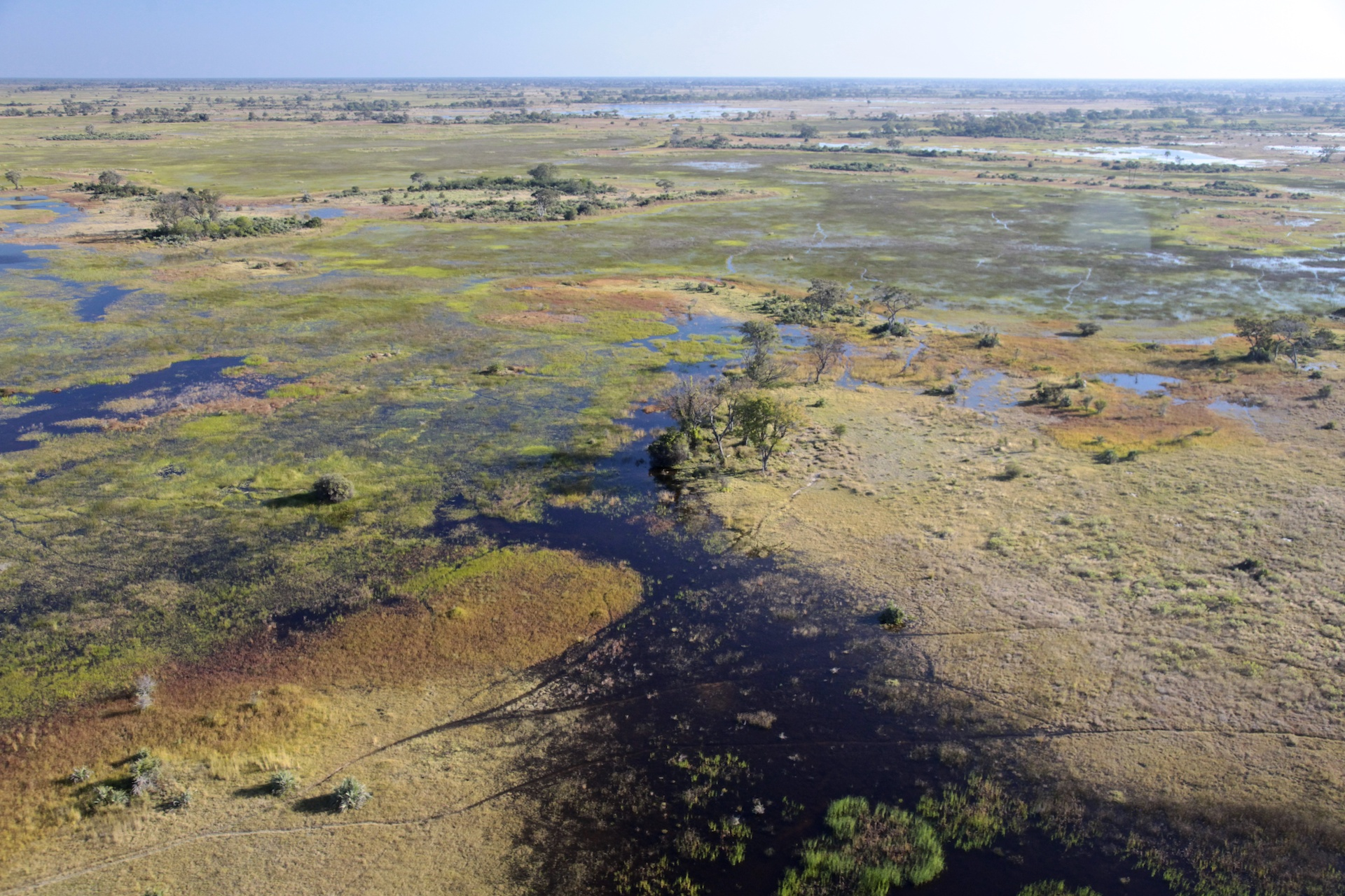 013_Botswana_1883.jpg