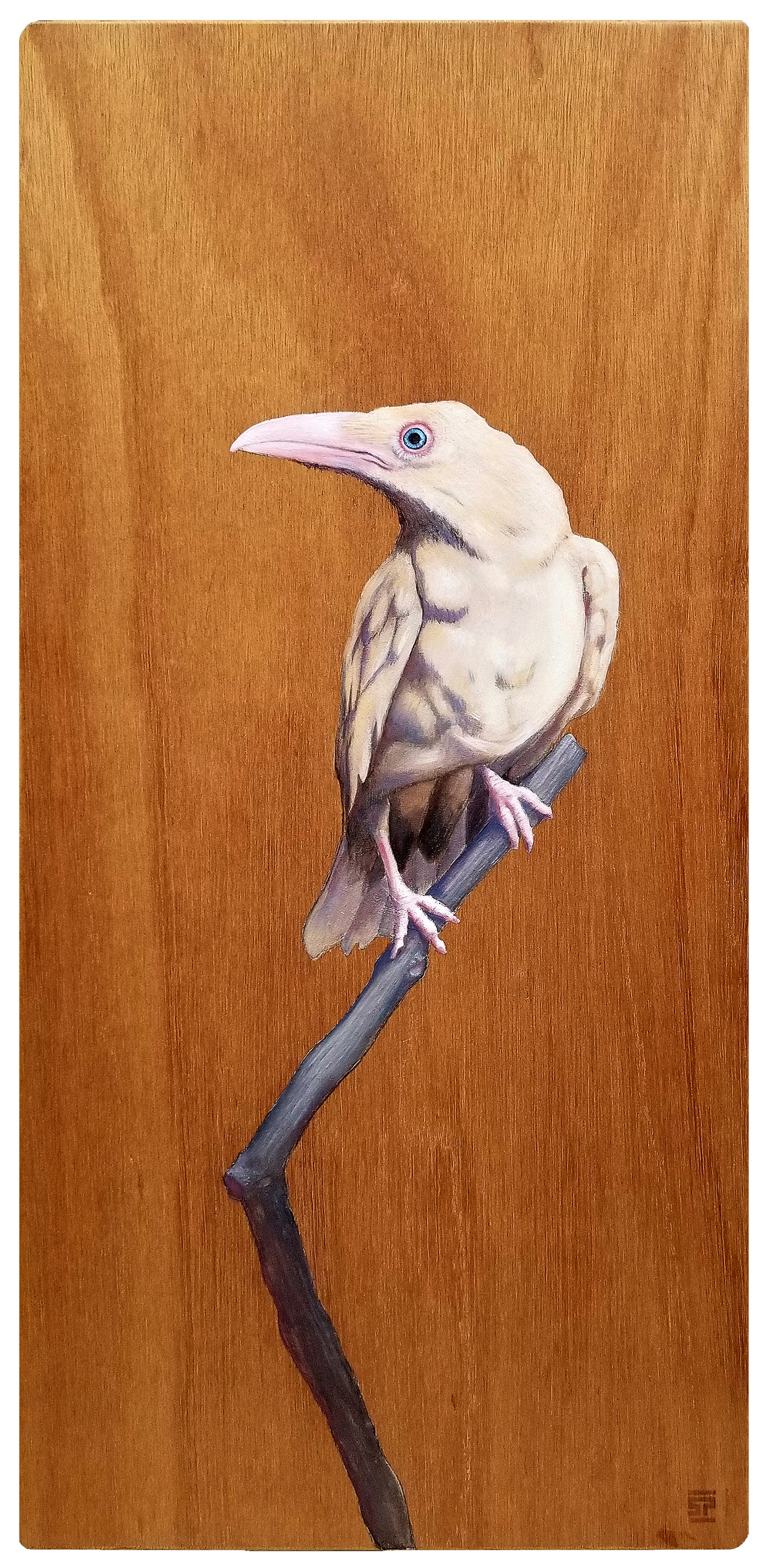 The White Raven - SOLD