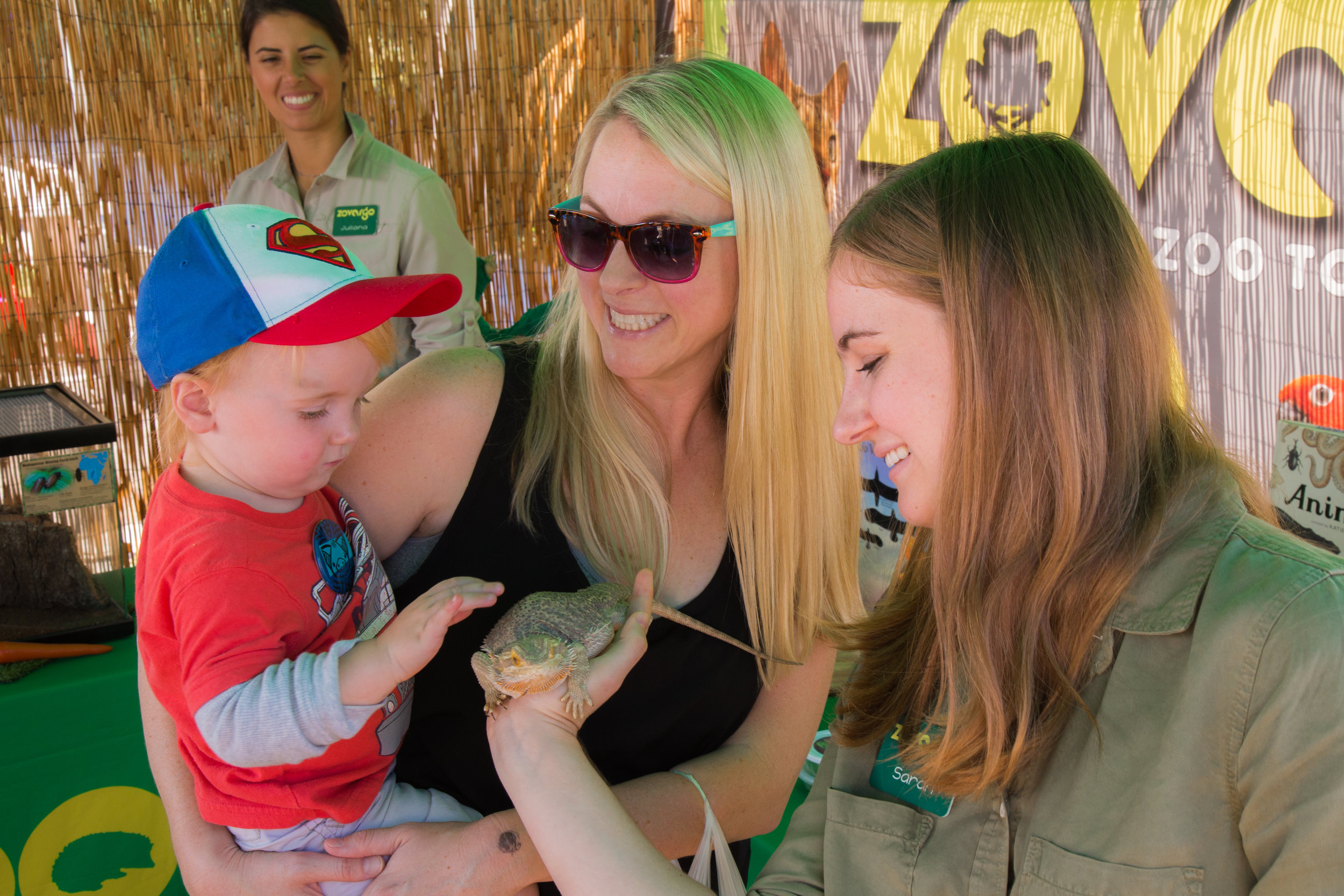 Locals meeting one of our Bearded Dragon ambassadors