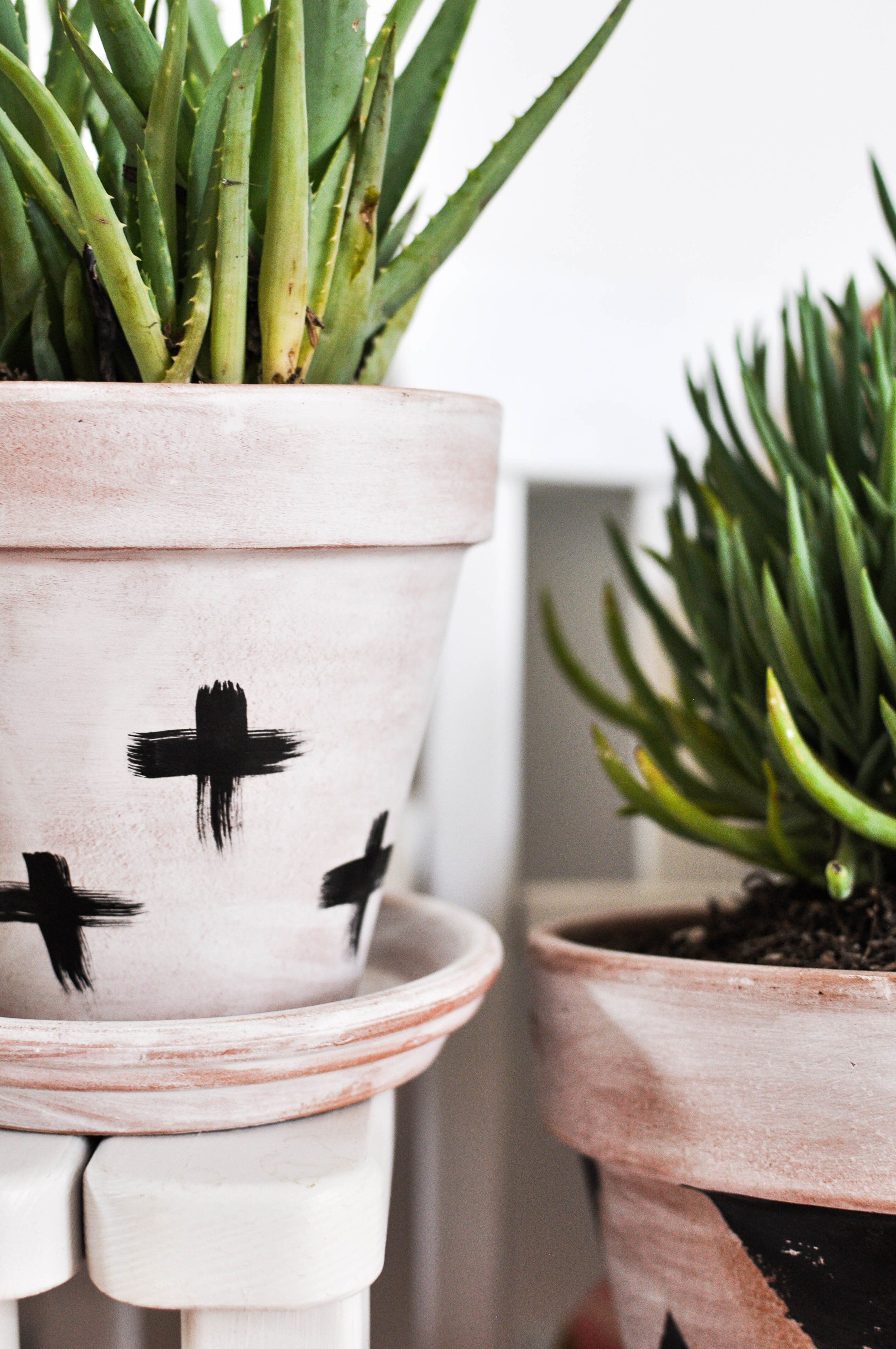 White pots with crosses