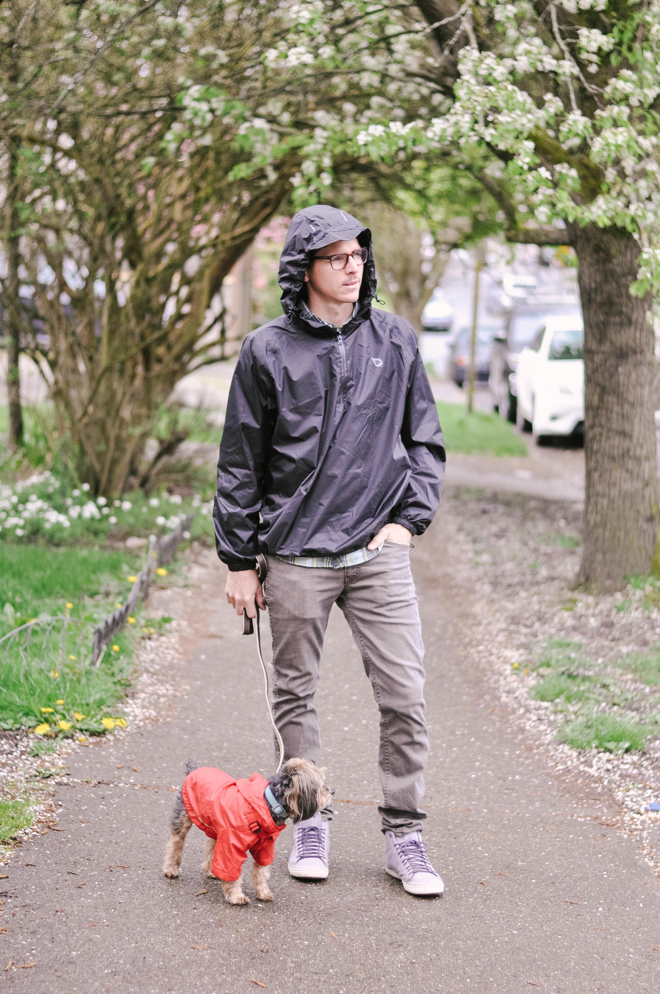 Man walking small dog in rain