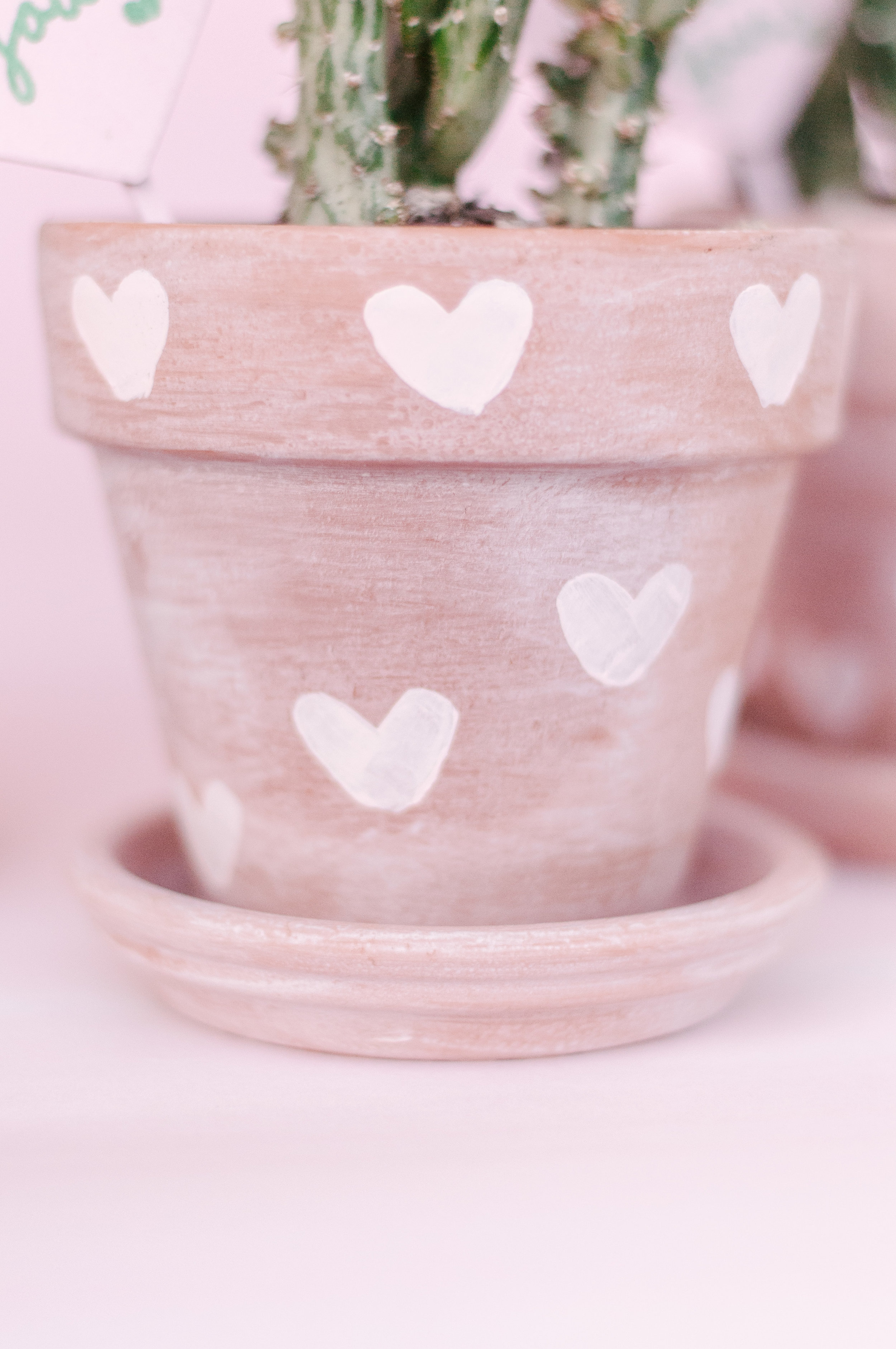 DIY Painted Terracotta Pots