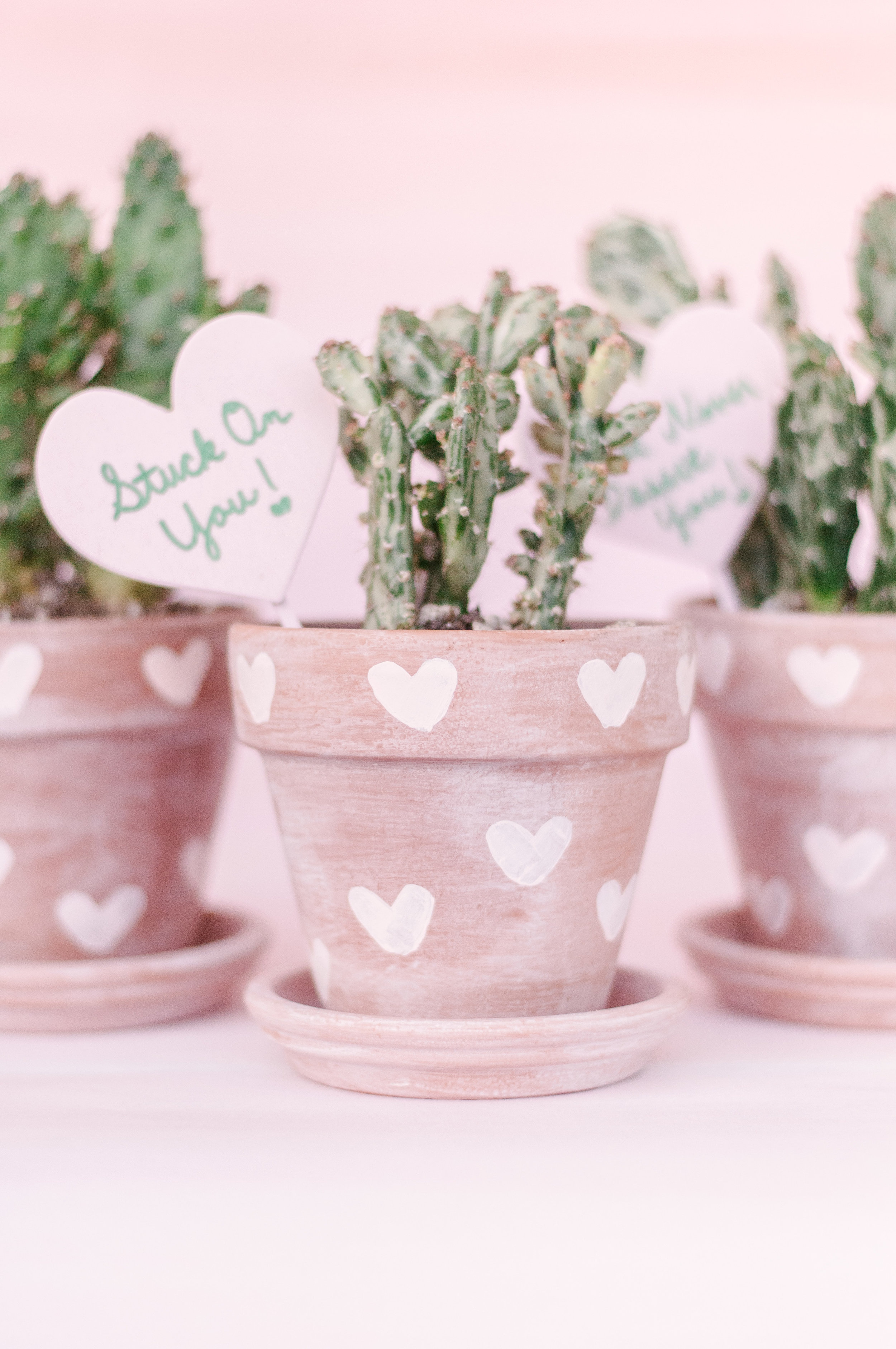 DIY Painted Heart-Print Terra Cotta Pots
