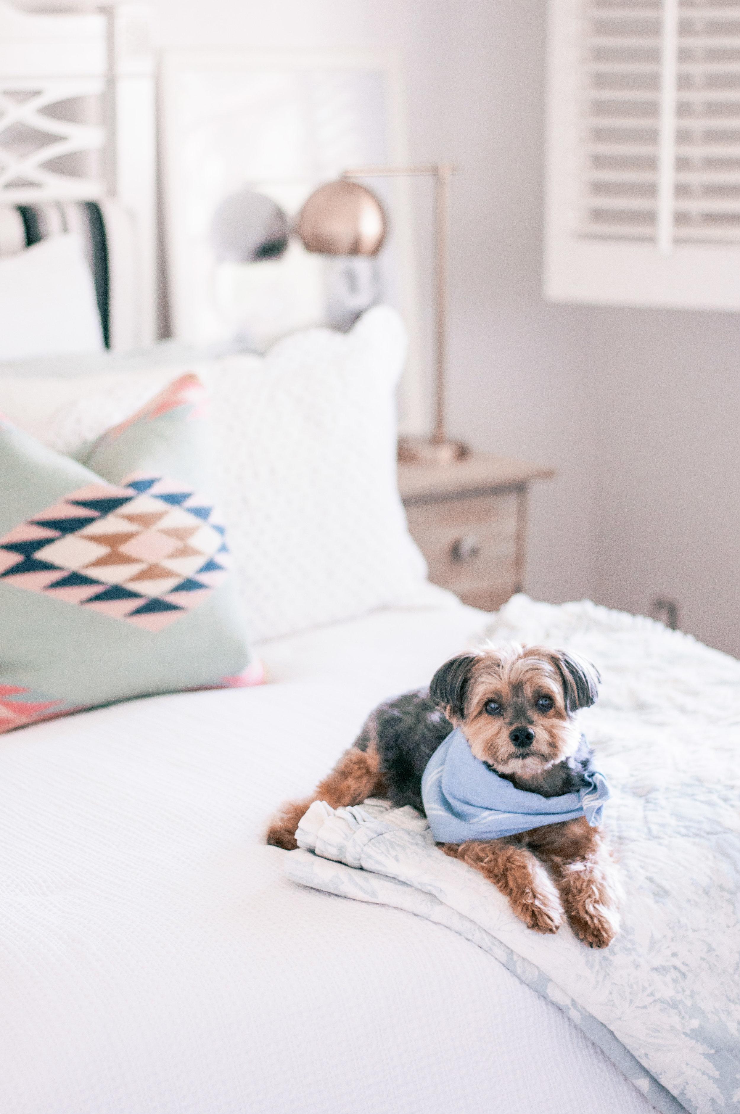 Cozy White Farmhouse Master Bedroom Ideas