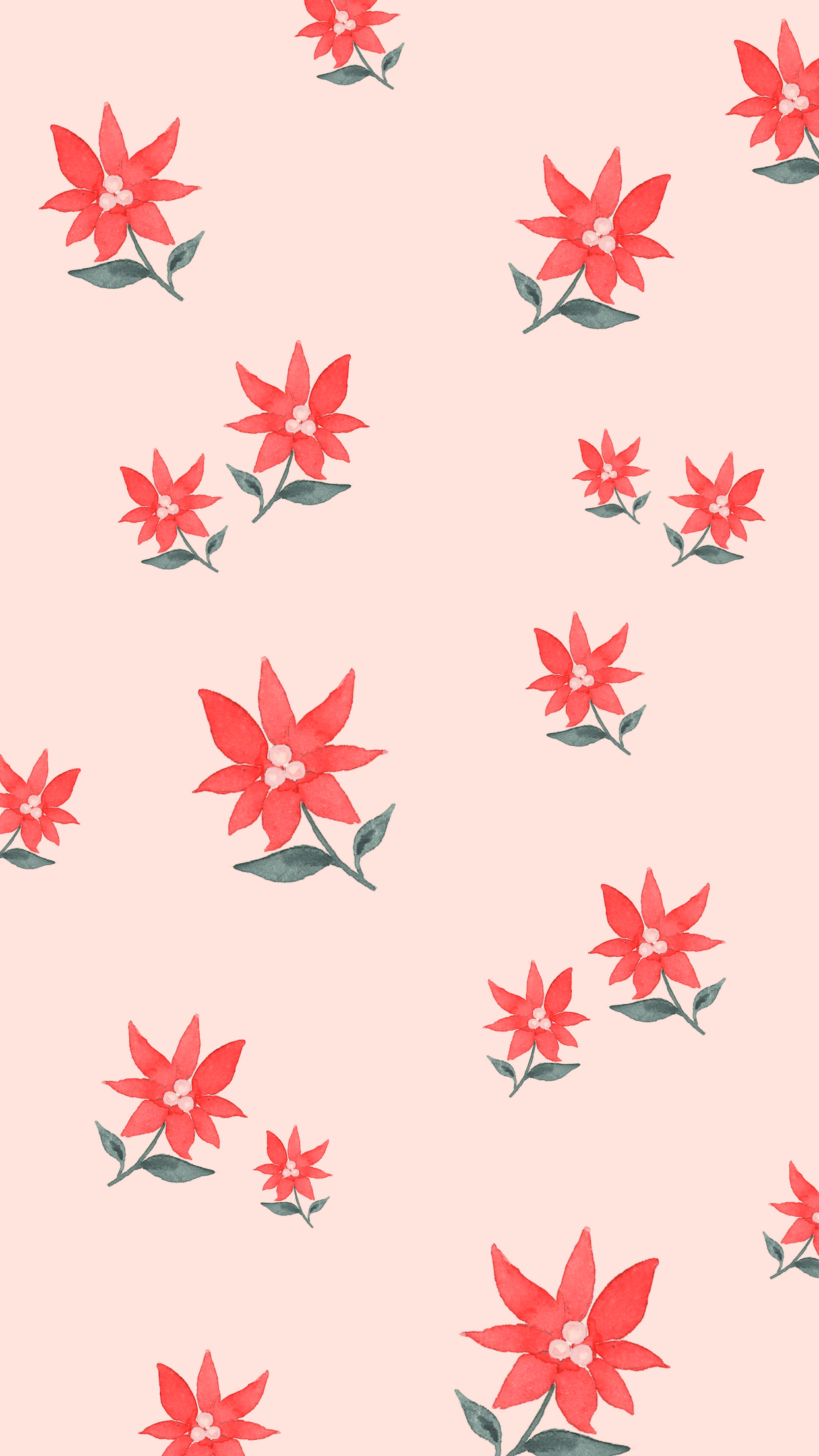 Holiday-Christmas-Winter-Phone-Wallpaper-Background-Poinsettia.jpg