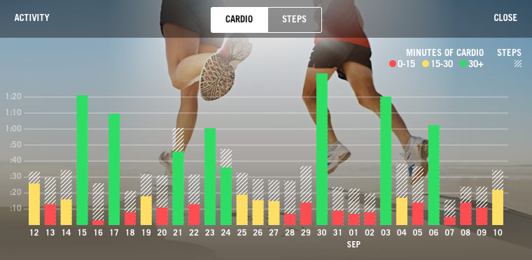 Exercise Monitoring for Health Coaches