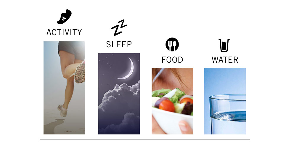 the nudge score indexes activity, sleep, food and water logging