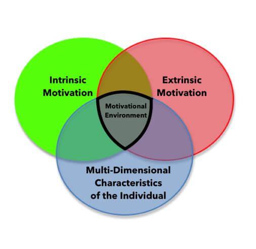 Motivational Environment For Health Program Participation