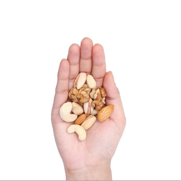 Nuts, 1 svg