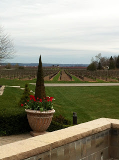 peller+estate+winery.JPG