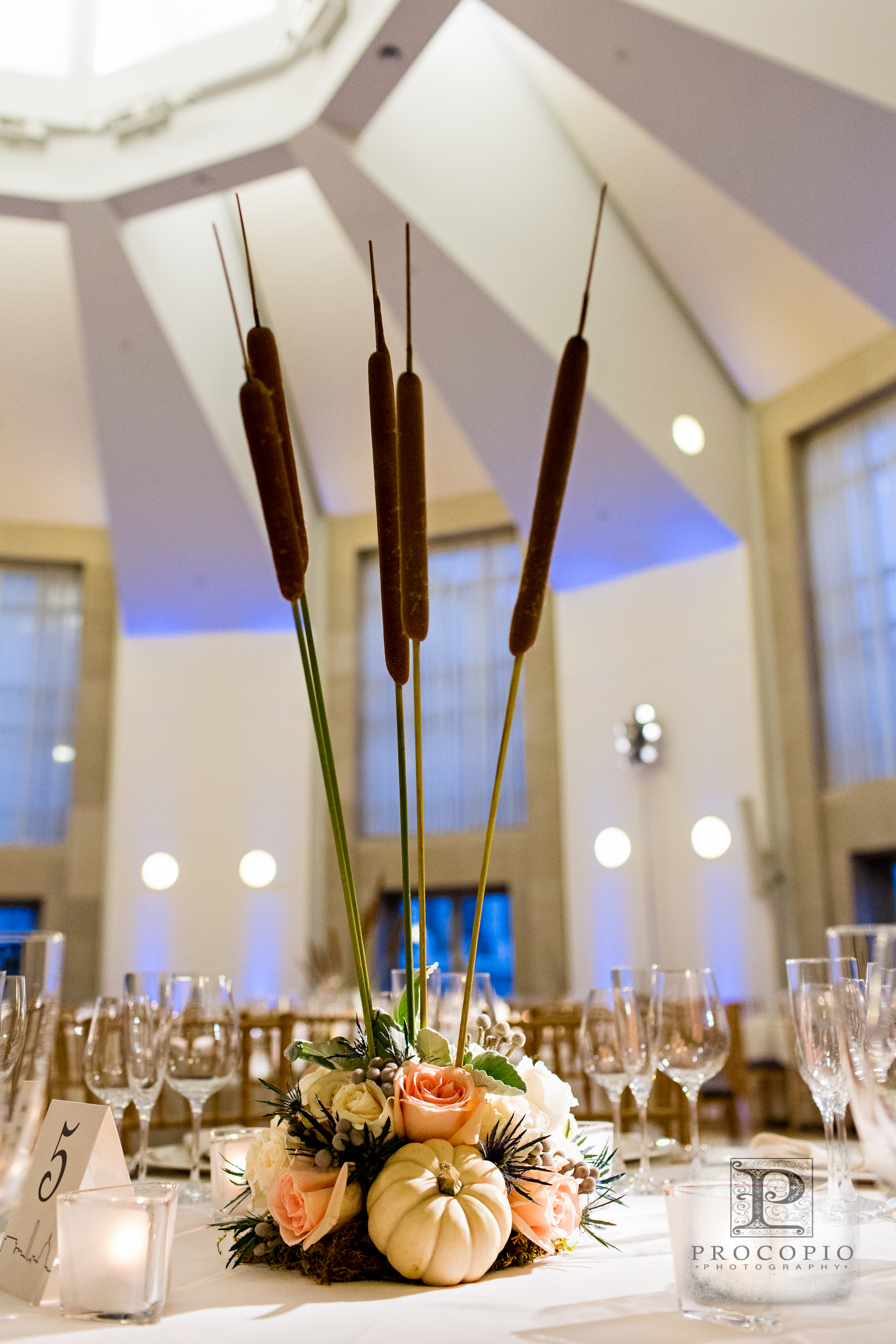 Custom designed centerpieces incorporated the pumpkins, cattails and pussy willow