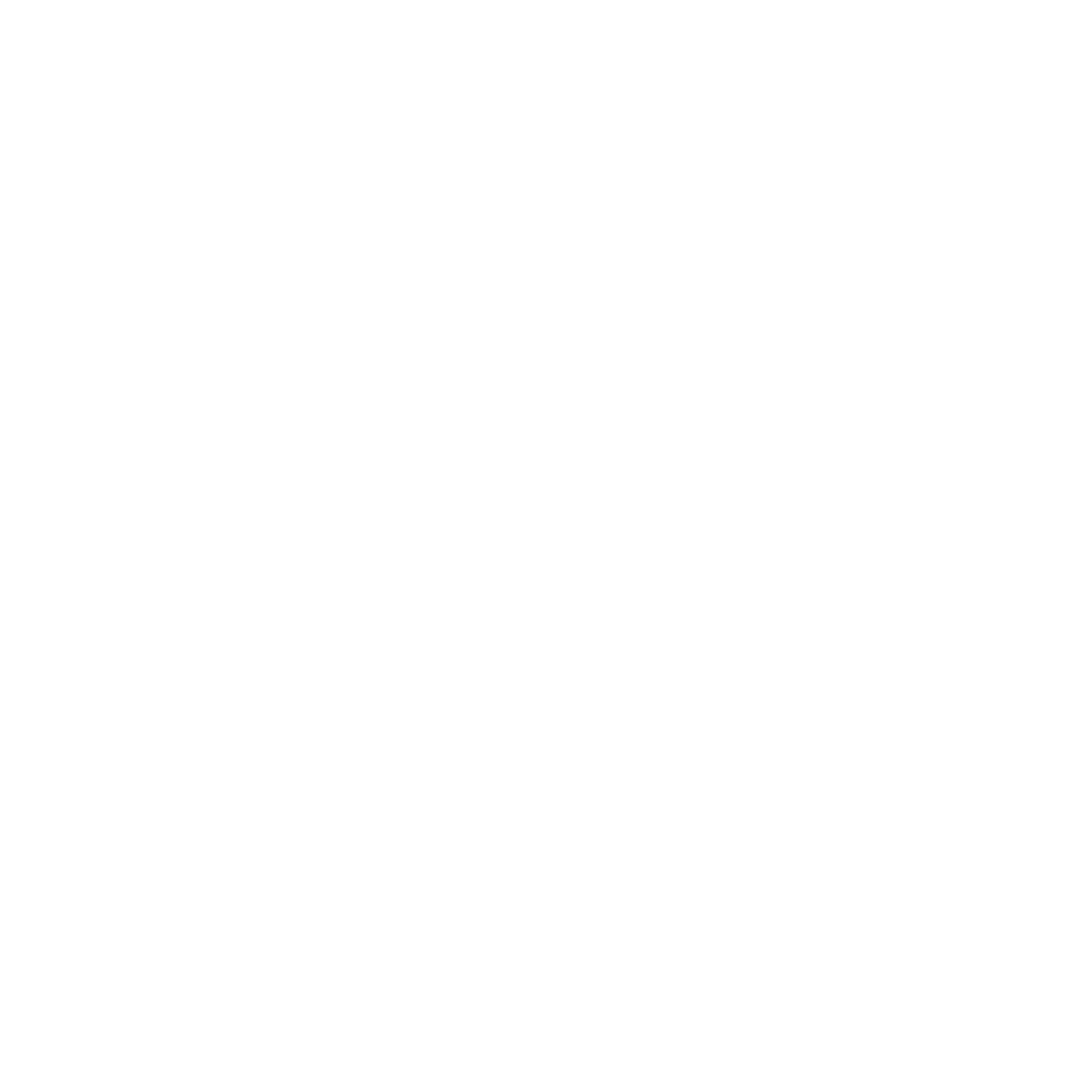 wavrunners__white logo_transparent.png