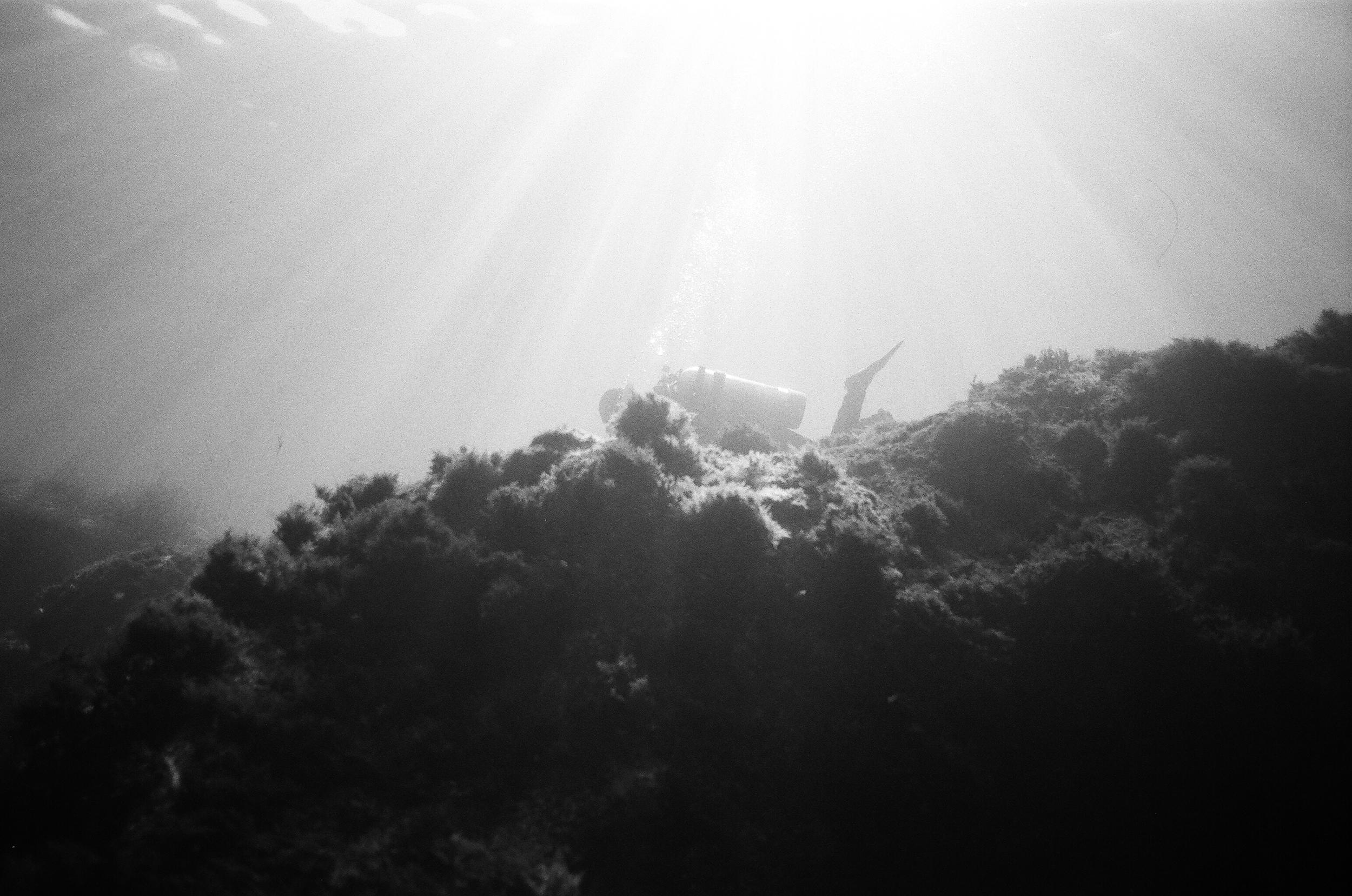 Light Diving