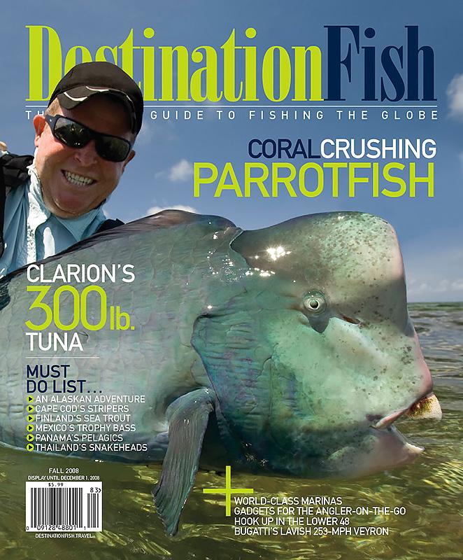 Fall-2008-cover.jpg