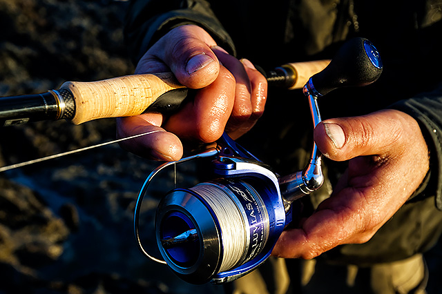 Daiwa Luvias 3000 (2011 model, discontinued) - So comfortable to fish with. Just a very, very good all round lure reel that really is as light as a feather and as tough as old boots. It comes with a spare spool as well.