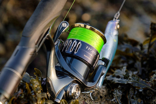 One year down the line with the Shimano Twin Power XD