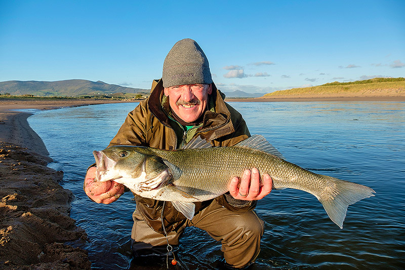 The biggest shore-caught bass I have ever photographed, and it was caught by one of our lads out in Kerry last year - you never know………….