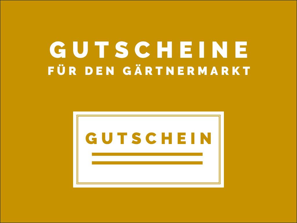 Shop_Kasten3.jpg