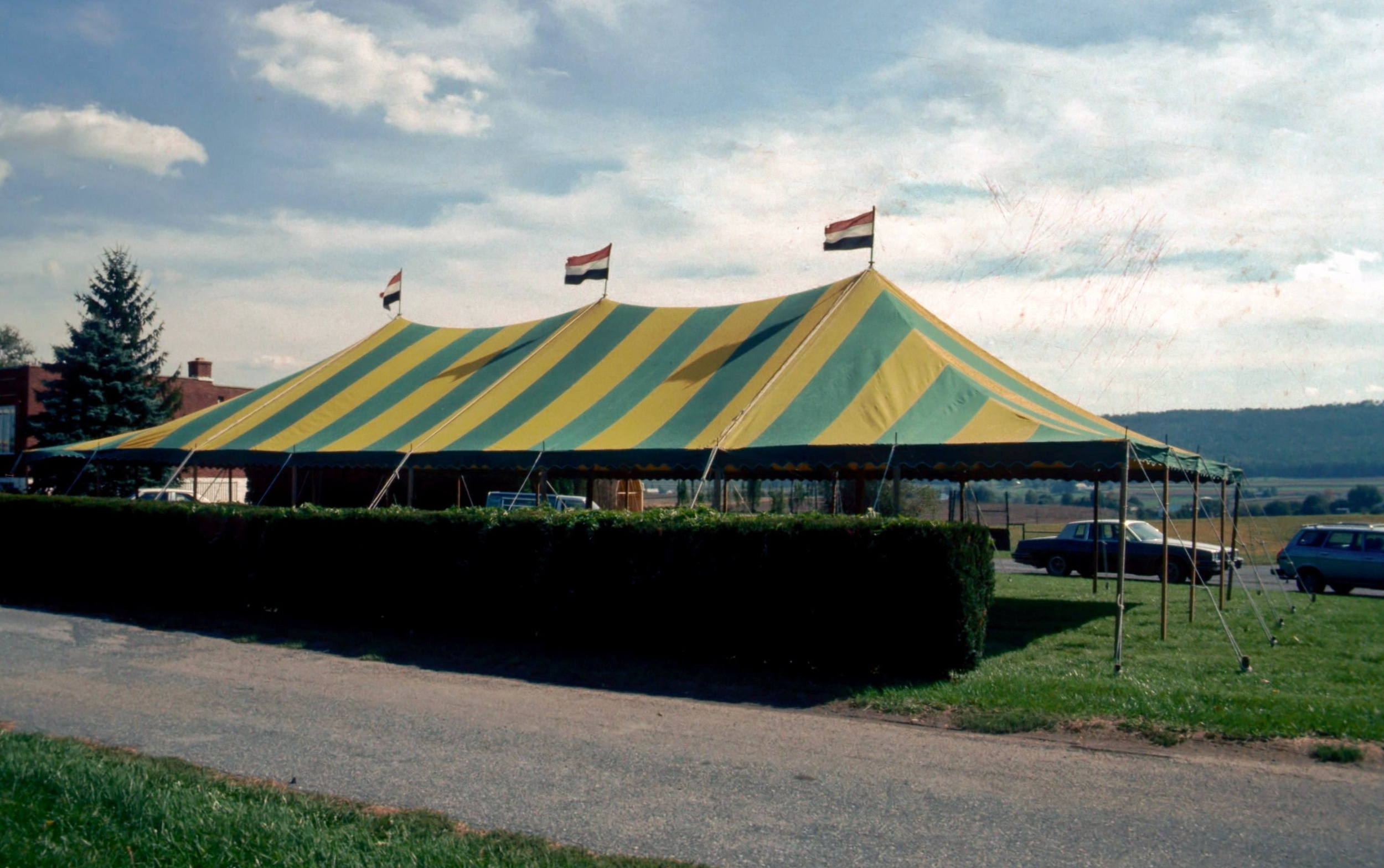 After gray and green tents, we bought green and yellow striped tents.
