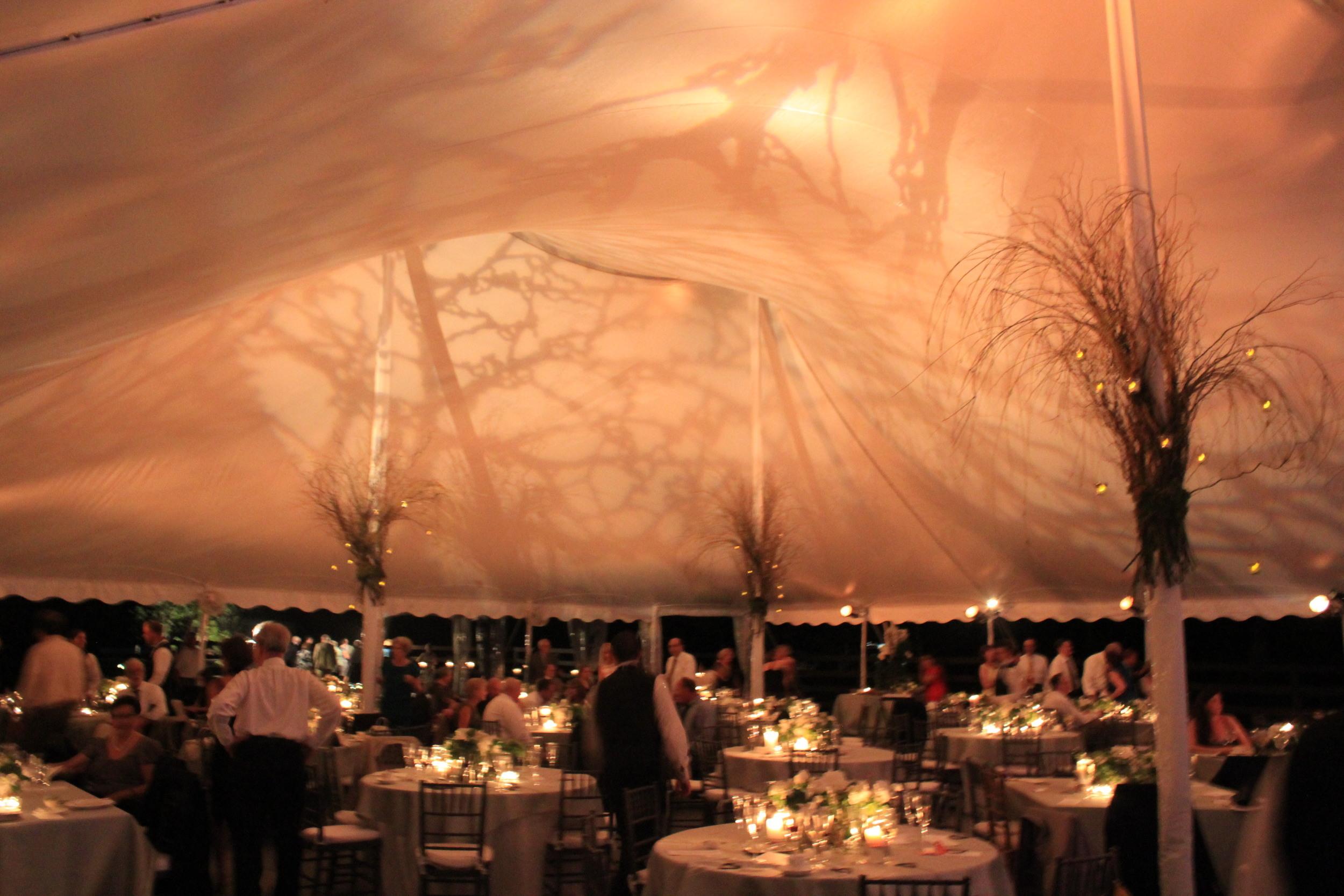 60x100 white wedding tent