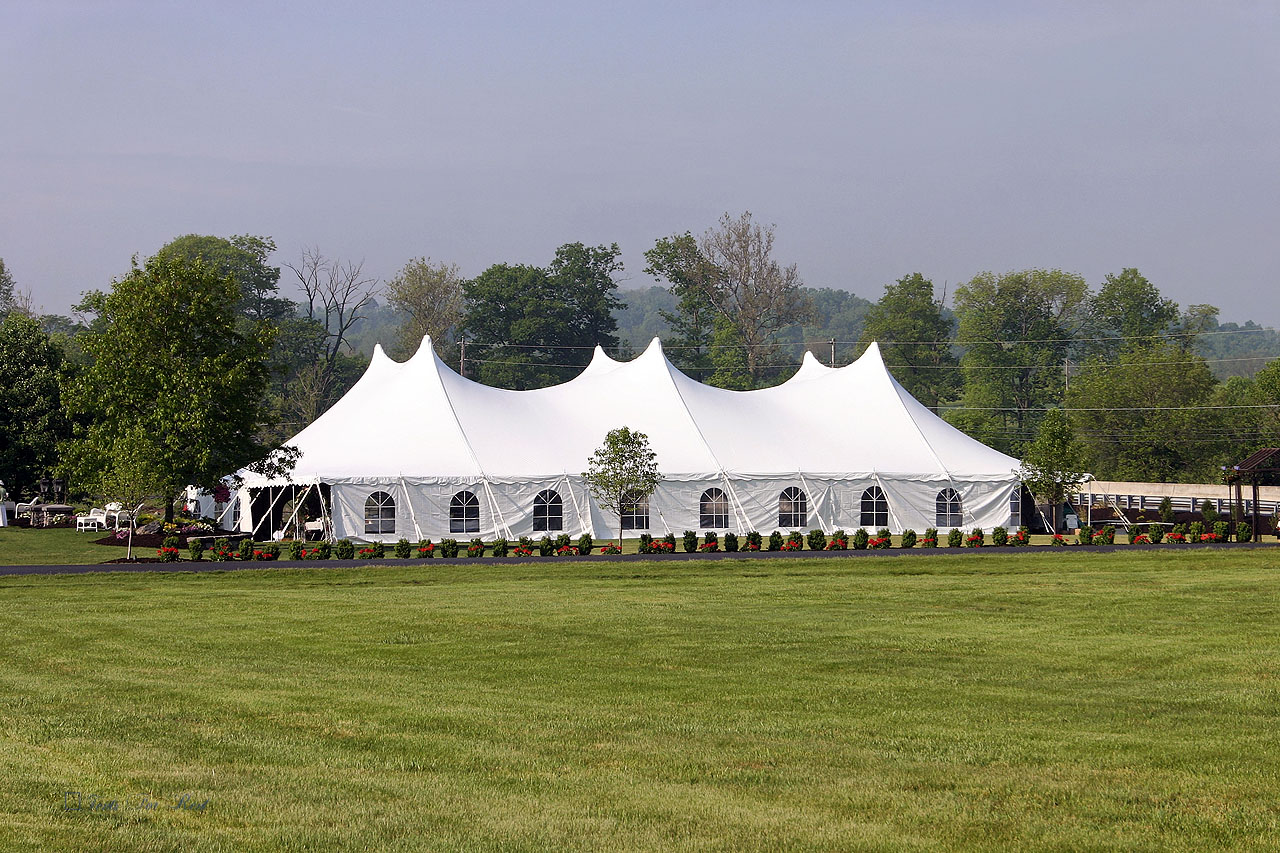 Wedding tent with cathedral window sidewalls