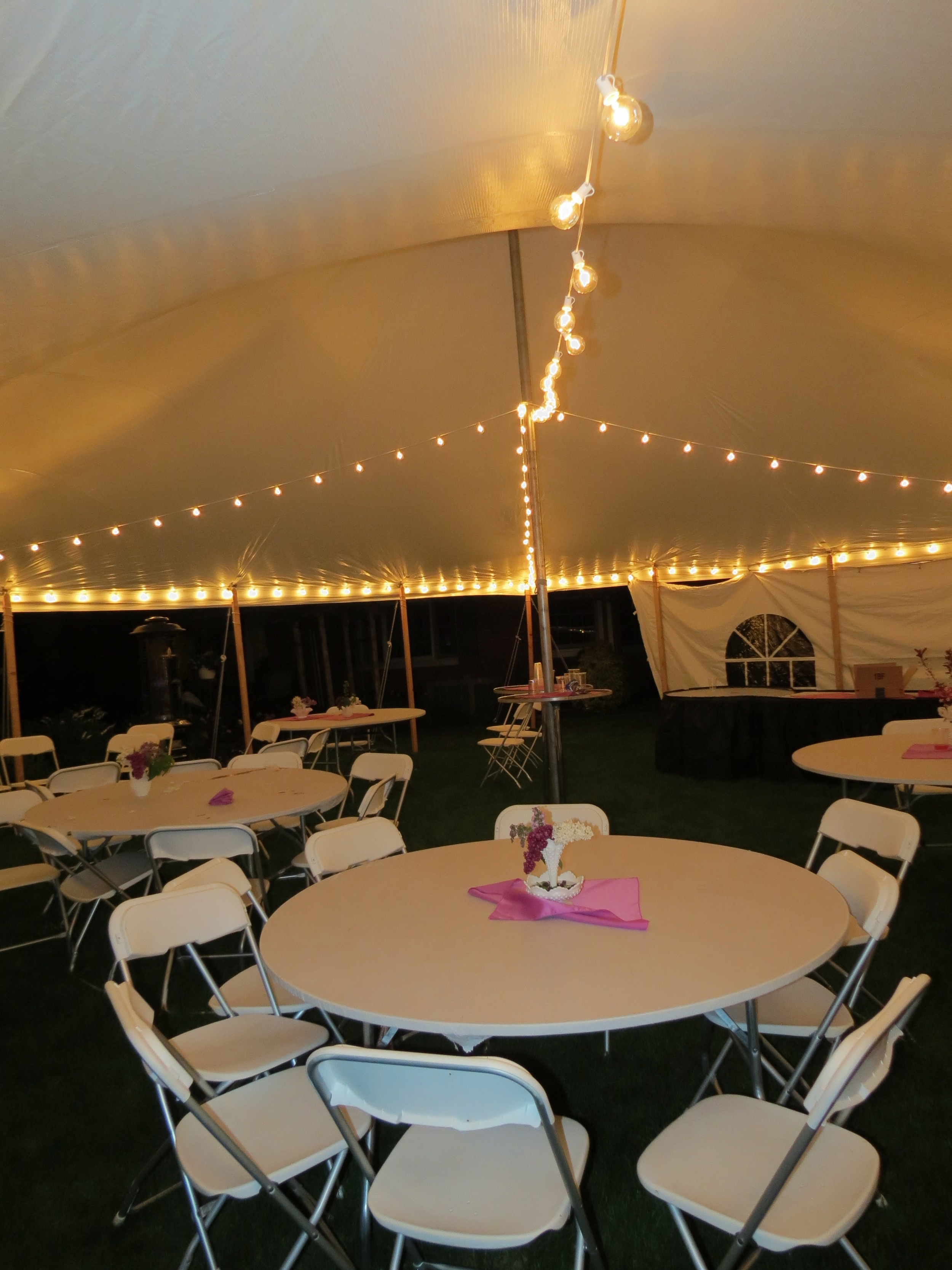 Party tent cafe lights with clear globe bulbs
