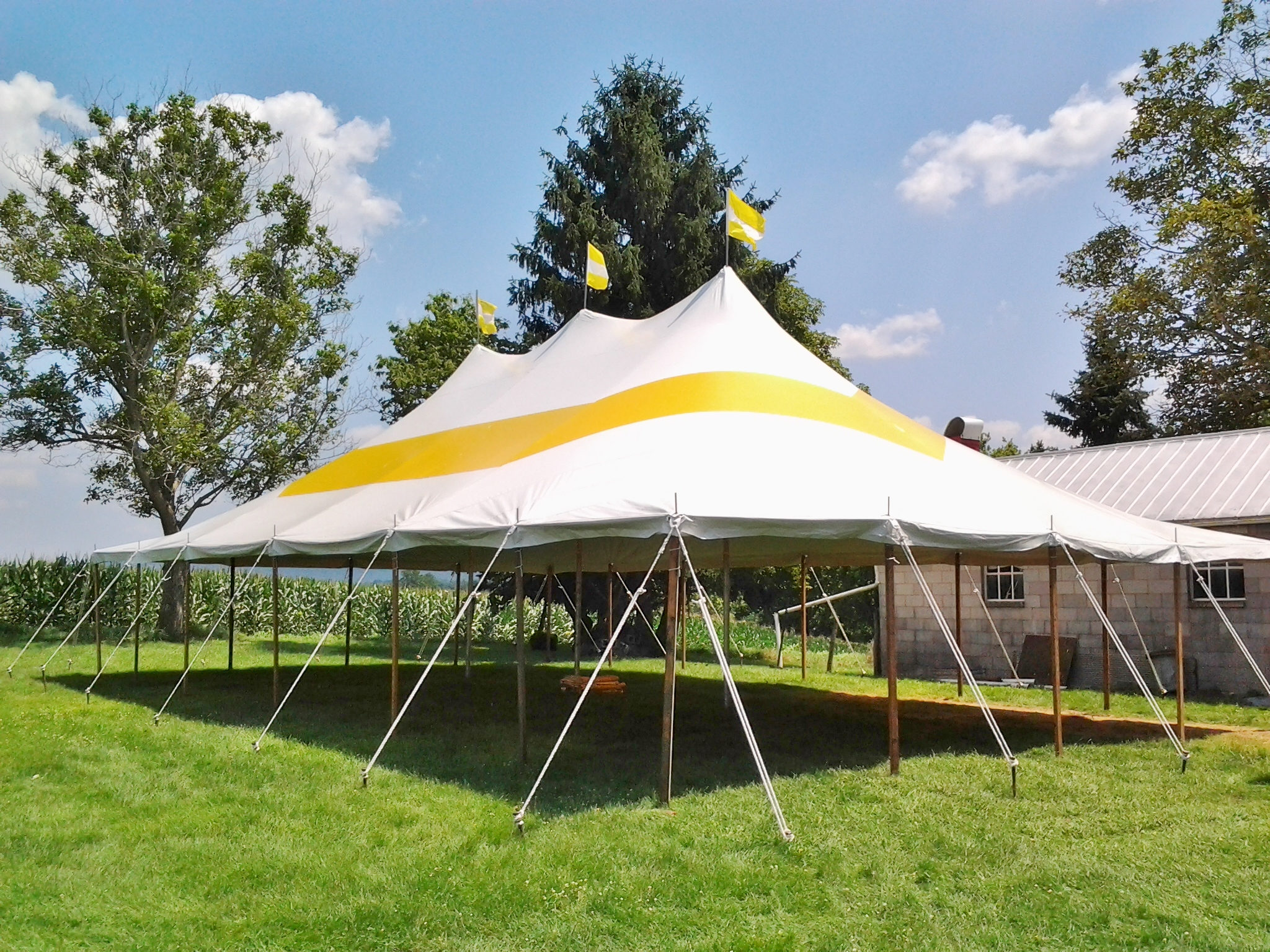 30x50 yellow and white graduation party tent tent