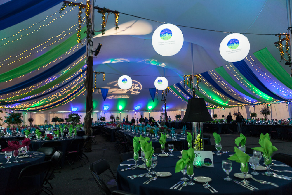 Large tent for corporate function