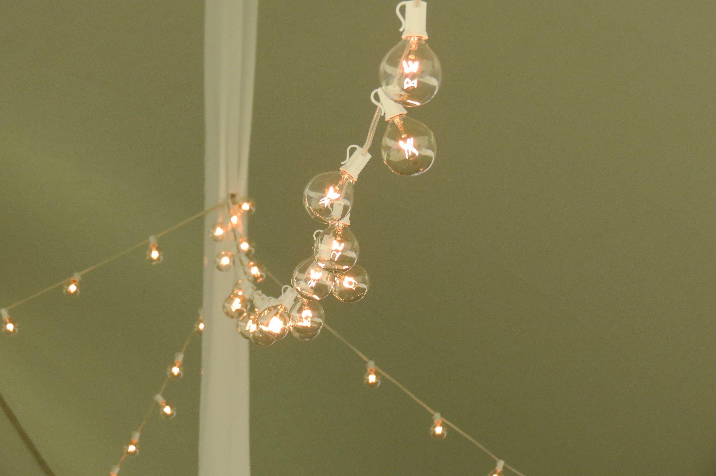 Cafe lighting rentals in Dover DE