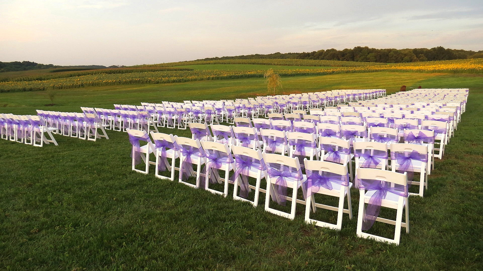 Montgomery+Co%2C+MD-chairs-white-white-padded-chairs-Purple-Sashes-Heidi-Nash-Tents-For-Rent-501.jpg