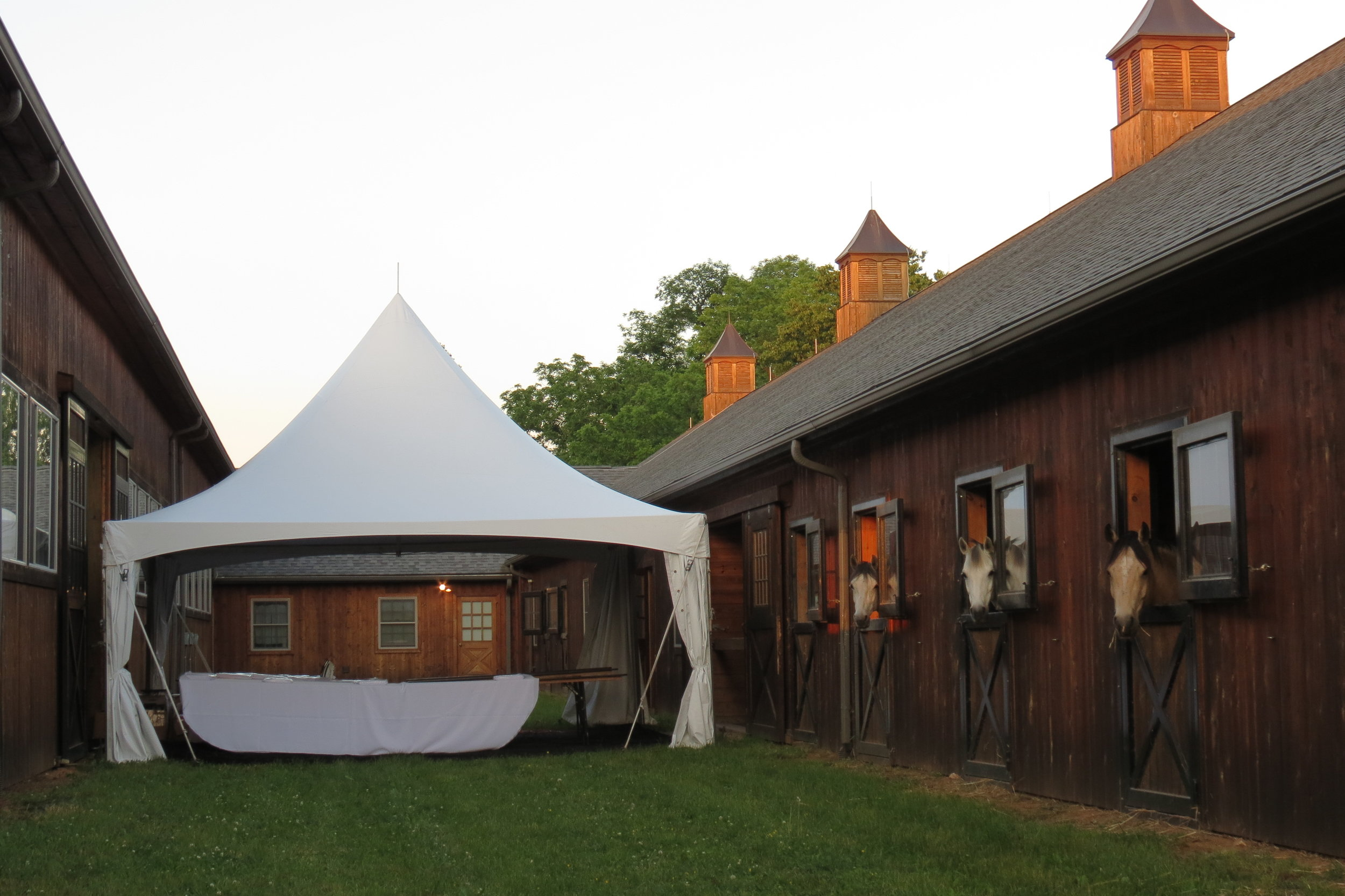 Beautiful white frame tent for rent in Radnor, PA
