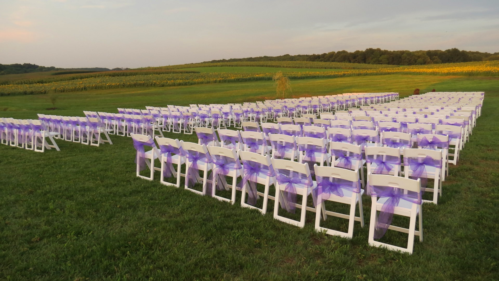 Comfortable white padded garden chairs for rent in Oxford, PA