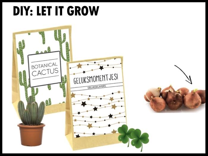 Botanical cactus: gevuld met cactuszaad. Afmetingen zakje 19 x 12 cm.  Geluksmomentjes: gevuld met Oxalis, ook wel bekend als geluksklaver. Afmetingen zakje 19 x 12 cm. Zo trots als een pauw: kraft doosje gevuld met Anemonen de Caen. Deze bloemetjes staan gegarandeerd voor een stevige bloei. Afmetingen doosje: 11×16,5×3 cm.  Vanaf €2,00 bij 250 stuks exclusief BTW.