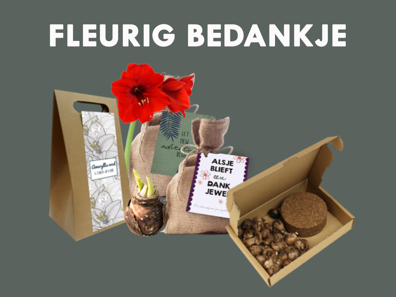 Zet je medewerkers in het zonnetje met een fleurig bedankje. Keuze uit verschillende soorten bloembollen en –zaadjes. Alle verpakkingen kunnen gepersonaliseerd worden.