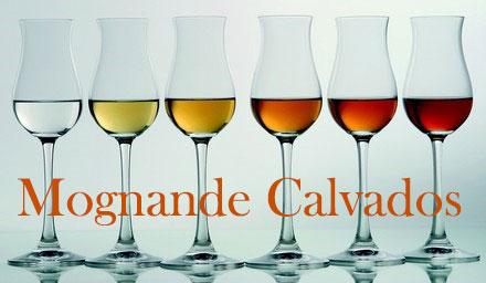 Calvadosprovning i Stockholm