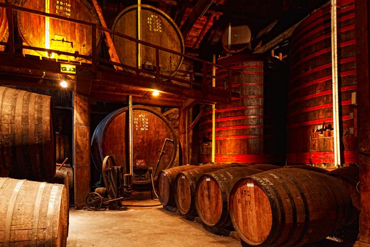 presentkort konjak cognacsprovning stockholm