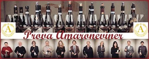 Amarone vinprovning i Stockholm