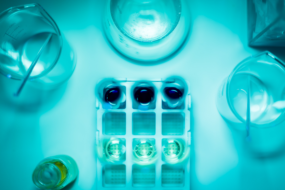 Jelly & Gin's Sensory Science