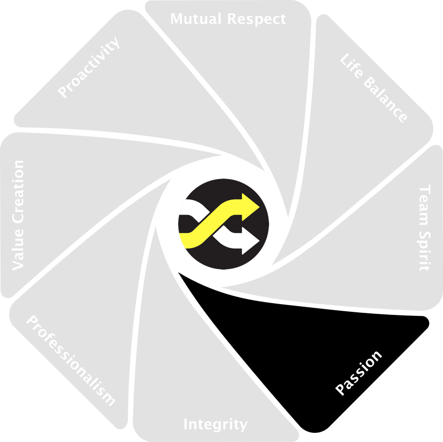 bpExperts values 5 - professionalism.png