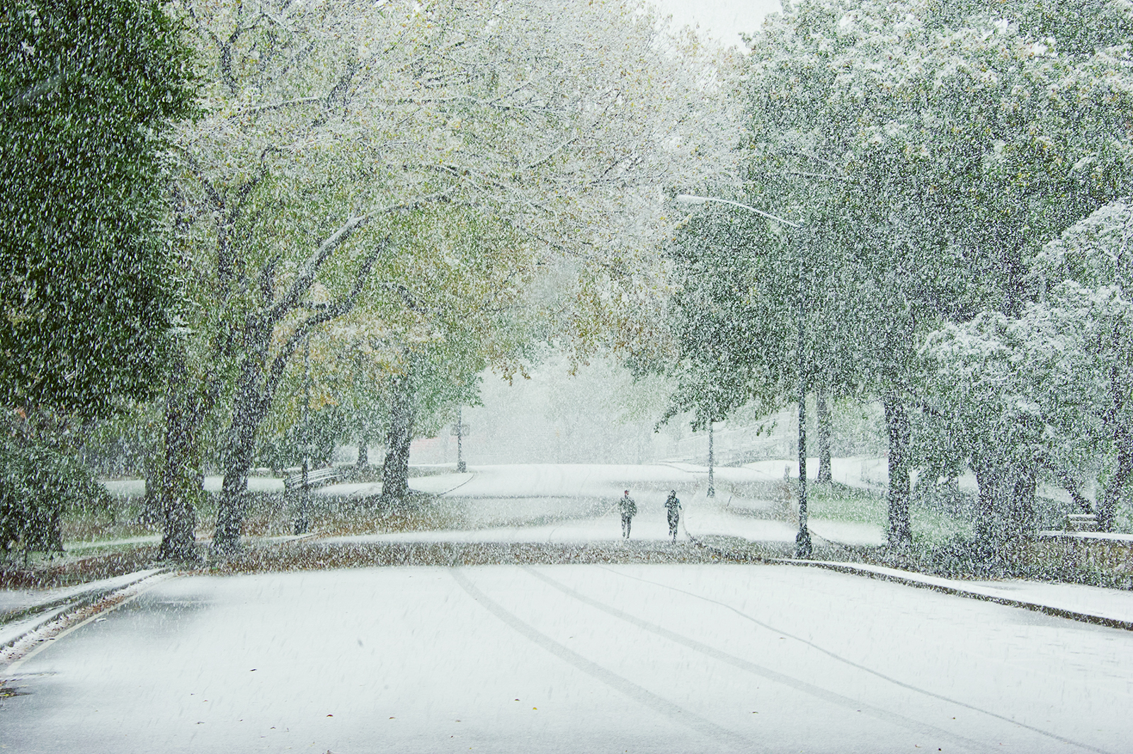 October Snow, Central Park