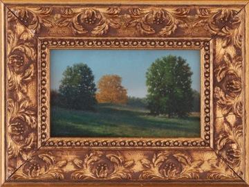 Morning Field II frame.jpeg