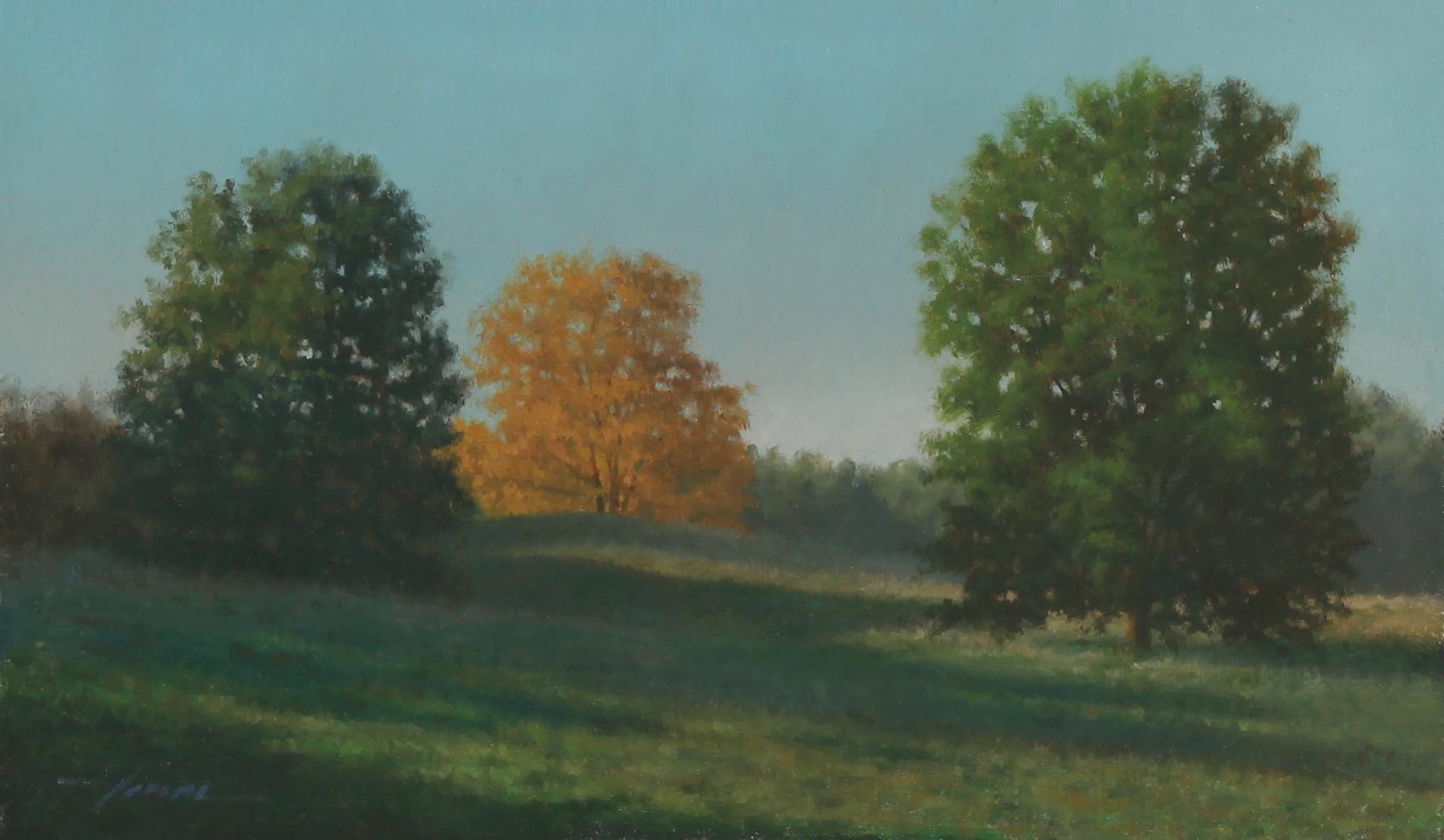 Morning Field II.jpg