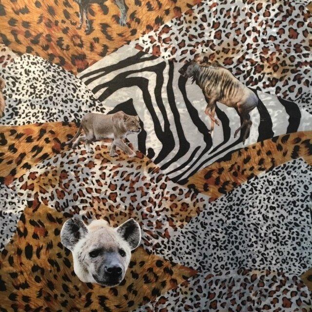 Safari Portraits on Animal Prints