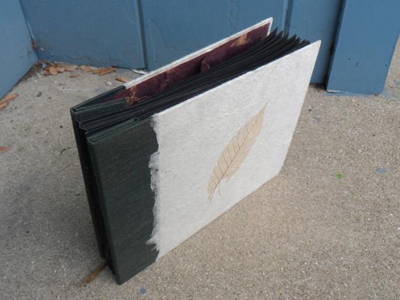 book standing outside.jpg